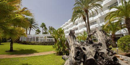 Trädgård på hotell Abora Catarina i Playa del Inglés på Gran Canaria.