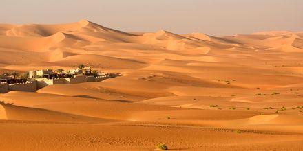 Öken utanför Abu Dhabi, Förenade Arabemiraten.