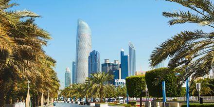 Promenera bland palmblad och skyskrapor i Abu Dhabi, Förenade Arabemiraten.