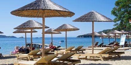 Stranden vid hotell Esperides på Skiathos, Grekland.