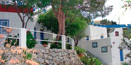 Hotell Aegean Homes i  Myrties & Massouri på Kalymnos.