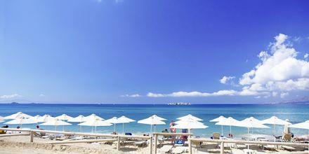 Stranden vid Aegean Land på Naxos i Grekland.