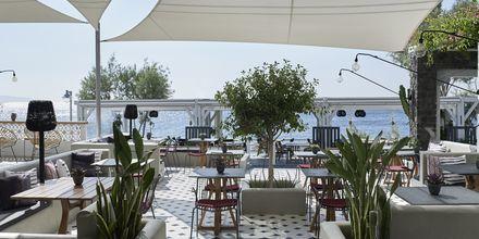 Baren på restaurang Mesogaia på hotell Afrodite i Kamari, på Santorini, Grekland.