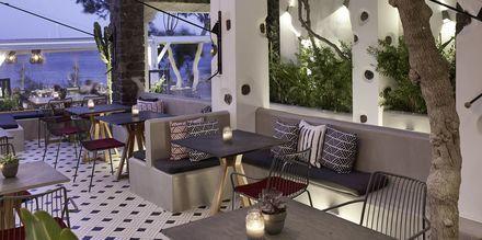 Baren på restaurang Mesogaia på hotell Afrodite i Kamari på Santorini, Grekland.