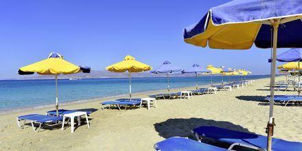 Agia Anna/Plaka Beach på Naxos i Grekland.