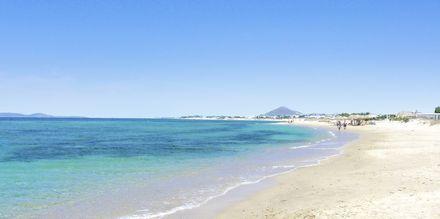 Plaka Beach på Naxos, Grekland.