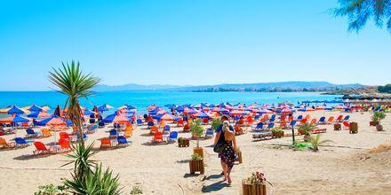 Stranden i Agii Apostoli på Kreta.