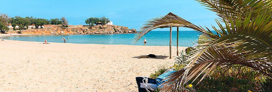 Varva spännande utflykter med lata dagar på stranden under premiumresan.
