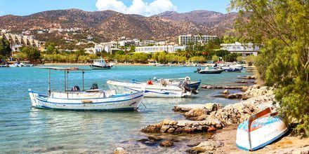 Pittoreska Agios Nikolaos på Kreta.