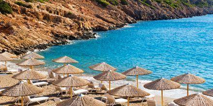 Strand vid Agios Nikolaos på Kreta.