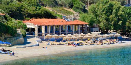 Stranden vid hotell Agrilionas på Samos