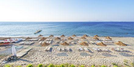 Stranden vid hotell Akti Beach Club i Kardamena på Kos, Grekland.