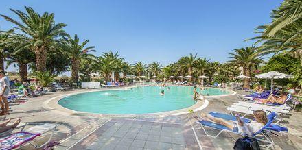Poolen Kalimera på hotell Akti Beach Club i Kardamena på Kos, Grekland.