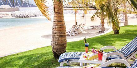 Stranden precis utanför hotell Al Raha Beach i Abu Dhabi, Förenade Arabemiraten.