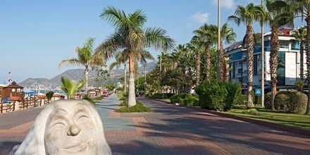 Strandpromenaden i Alanya, Turkiet.