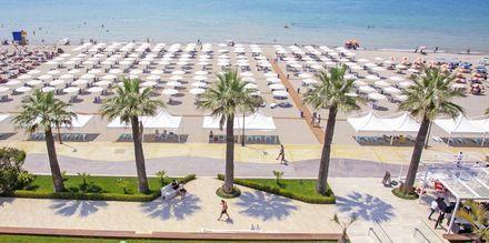 Stranden vid Premium Beach, Durres Riviera, Albanien.
