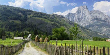 Vy upp mot de albanska alperna. Albaniens högsta berg, Korab, är 2753 meter högt.