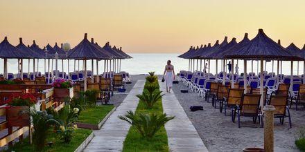 Skymning i Durres Riviera, Albanien.