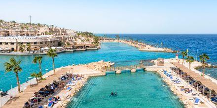 Lagunen på hotell Albatros Citadel Resort i Sahl Hasheesh, Egypten.
