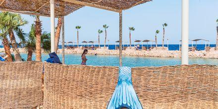 Stranden vid hotell Albatros Citadel Resort i Sahl Hasheesh, Egypten.