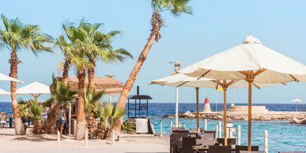 Vackra vyer på hotell Albatros Citadel Resort i Sahl Hasheesh, Egypten.