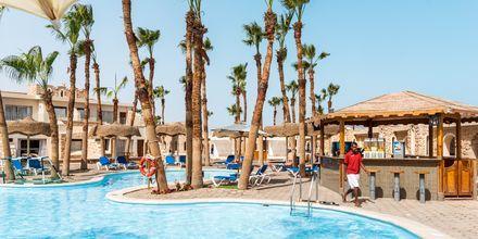 Poolområde med poolbar på hotell Albatros Citadel Resort i Sahl Hasheesh, Egypten.