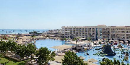 Poolområdet på Albatros White Beach Resort i Hurghada.