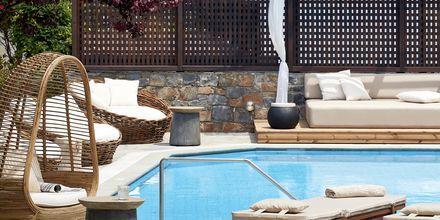 Poolområde på hotell Albatross Hotel & Spa i Hersonissos på Kreta.