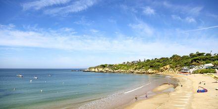 Praia da Oura-stranden vid Albufeira, Algarve.