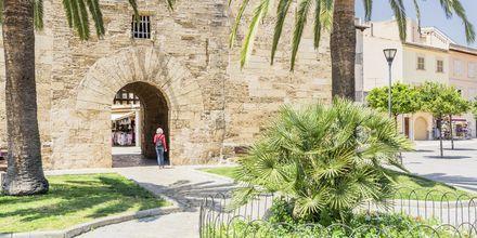 Ringmuren i gamla Alcudia har anor från 1300-talet.