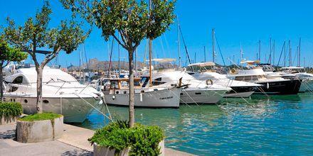 Port de Alcudia på Mallorca, Spanien.
