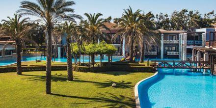 Hotellområdet på hotell Aldemar Olympian Village i Skafidia, Grekland.