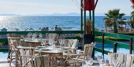 Restaurang Artemis på hotell Aldemar Olympian Village i Skafidia, Grekland.