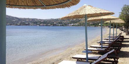 Stranden vid hotell Alea Mare på Leros, Grekland.