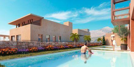 Skissbild på privat samt delad pool på hotell Alegria Beach Resort i Plakias på Kreta, Grekland.