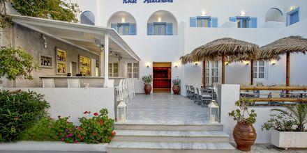 Bar på Alexandra i Kamari, Santorini.