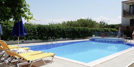 Poolområdet på hotell Alexandros M i Maleme på Kreta.