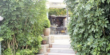 Hotell Alexandros M i Maleme på Kreta.