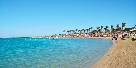 Stranden Dana Beach där Alf Leila Wa Leilas Waterparks gäster får sola och bada.