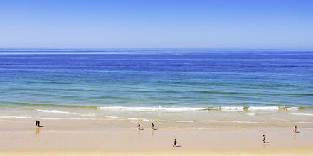 Falesia Beach vid Albufeira på Algarvekusten, Portugal.