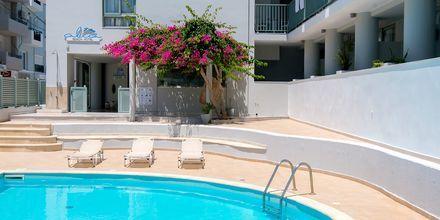 Pool på hotell Alia Beach i Hersonissos, på Kreta.
