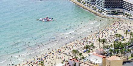 Stranden i Alicante, Playa del Postiguet.