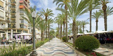 Strandpromenaden i Alicante, kantad med restauranger och uteserveringar.