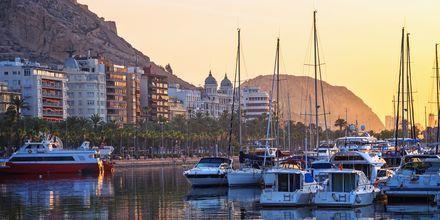 Hamnen i Alicante, Spanien.