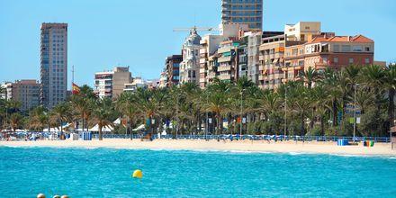 Alicante i Spanien har ett behagligt klimat året om.