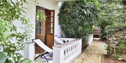 Hotell Alidia Beach Resort i Norra Goa, Indien.
