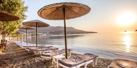 Stranden vid hotell Alinda på Leros, Grekland.