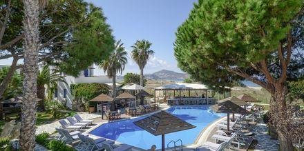 Poolen på hotell Alkyon Beach i Naxos stad, Grekland.