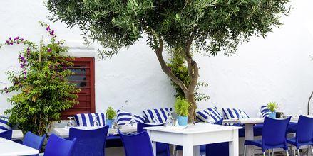 Bar på Alonissos i Grekland.