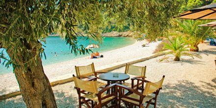 Alonissos i Grekland.